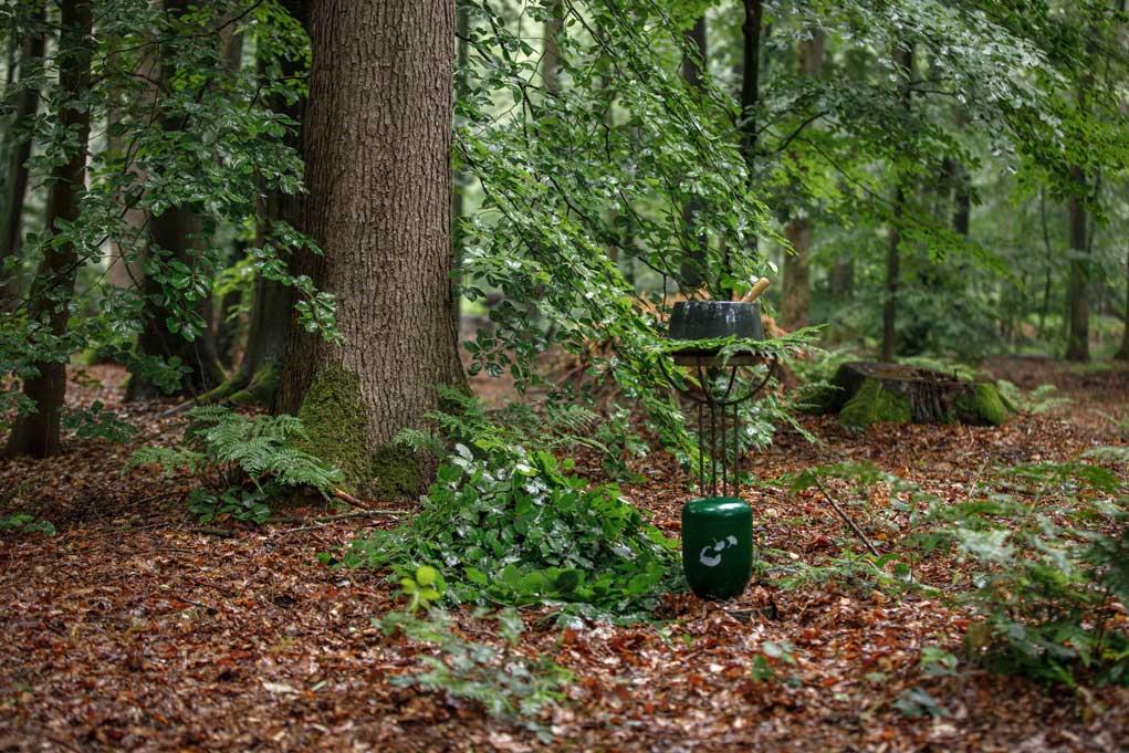Waldbestattung Gedächtniswald Logabirum